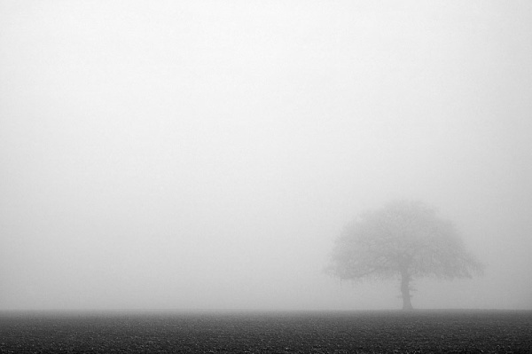 Photo Bing Images; Thick Fog